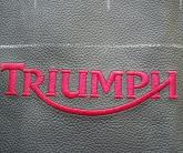 Вышитый логотип Triumph на коже